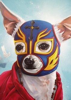 chihuahua lucha libre mask
