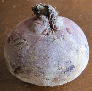 raw beet