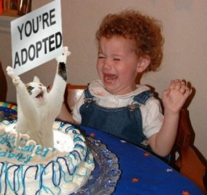 youre_adopted_trollcat